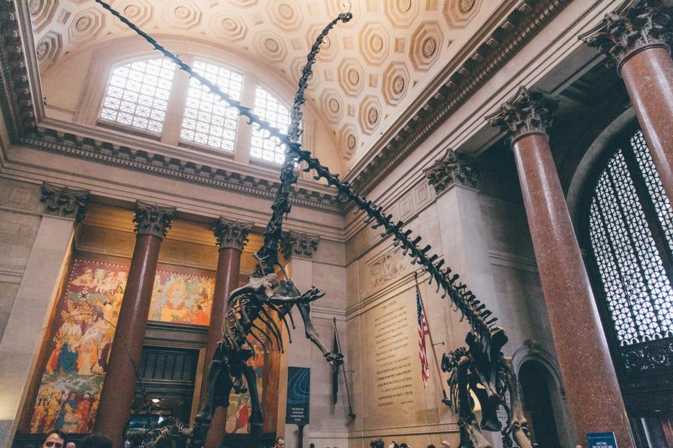 newyork-naturalhistorymuseum