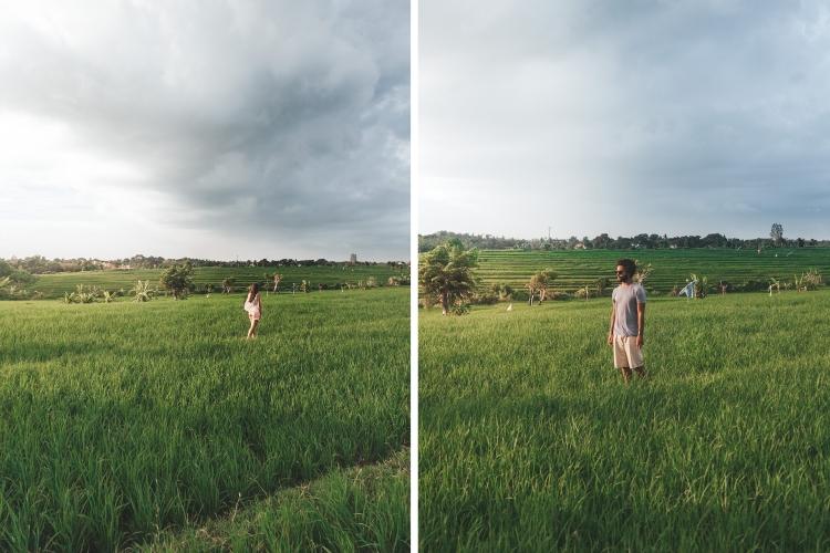 campos-arroz-pipa-gui_canggu_bali
