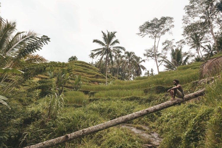 tegalalang-rice-terraces_gui_ubud_bali
